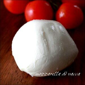 イタリア産 モッツァレラバッカチーズ 100g モッツアレラチーズ 無添加食品 チーズ おつまみ お取り寄せ