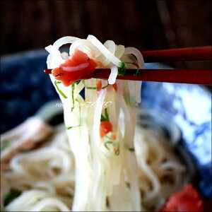 凄い生冷麺りんご苑の生冷麺10食セットスープ付きおつまみピビン麺冷麺お中元お取り寄せ