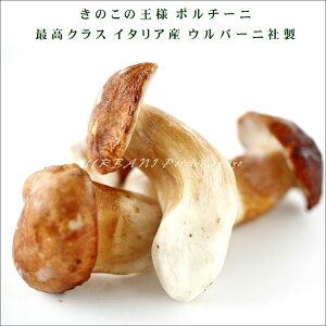ヨーロッパ産 ポルチーニ茸 約1kg お取り寄せ 高級 ギフト