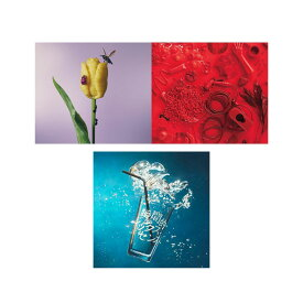 【送料無料】 あいみょん ALBUM3作セット / 「おいしいパスタがあると聞いて(通常盤)」 「瞬間的シックスセンス」 「青春のエキサイトメント」