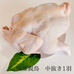 親鶏 中抜き 丸どり 丸鶏 国産 国産鶏 親鳥 ひね鳥 かしわ 成鶏 業務用 とりにく 鳥肉 とり肉