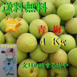 【送料無料】高知産青梅4Kgただし北海道沖縄は送料500円のご負担お願いします。