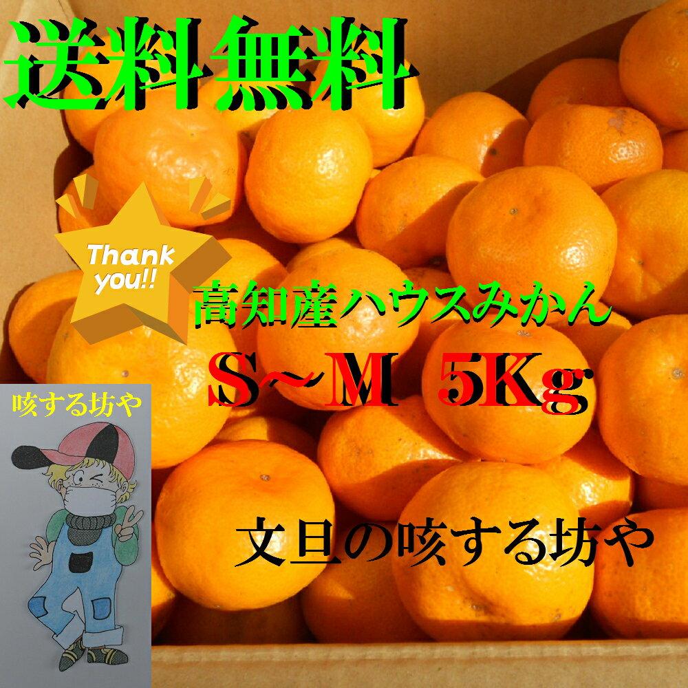 【送料無料】高知産ハウスみかん5Kg 贈答用赤秀品 ただし北海道沖縄は送料500円のご負担お願いします。