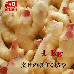 【送料無料】高知産ハウス新生姜4Kgただし北海道沖縄は送料500円ご負担お願いします。