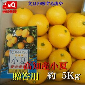 【送料無料】高知産 小夏 贈答用 約5KgサイズS〜Lただし北海道沖縄は送料800円(100サイズまで)のご負担お願いします。