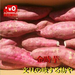 【送料無料】高知、徳島産、金時芋、土佐紅約5KgサイズS〜Lただし北海道沖縄は送料500円のご負担お願いします。