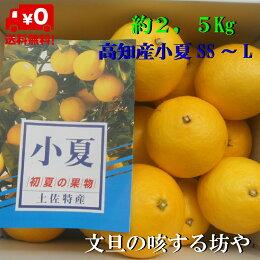 【送料無料】高知産小夏約2.5kg家庭用ただし北海道沖縄は、800円ご負担お願いいたします。