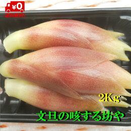 【送料無料】高知産みょうが2kgただし北海道沖縄は、送料500円のご負担お願いします。