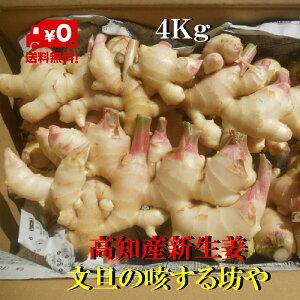 【送料無料】高知産露地新生姜 家庭用 生姜 約4Kg ただし北海道沖縄は送料600円のご負担お願いします。9月半ばより順次発送いたします。