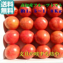 【送料無料】贈答用高知産フルーツトマト約2Kg甘〜いトマトです。トマト好きならたまりません。