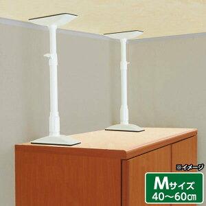 アイリスオーヤマ 家具転倒防止伸縮棒M KTB-40 2本セ...