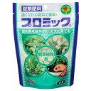 ハイポネックスジャパン プロミック 観葉植物用 150g