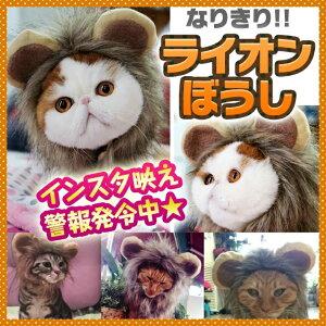 ペット用ウィッグ ♪ 耳付き ライオン たてがみ【全3...