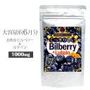 100倍濃縮・北欧産ビルベリー配合 マリーゴールド ビタミンA ルテイン 大容量6ヶ月分 アイケア サプリ