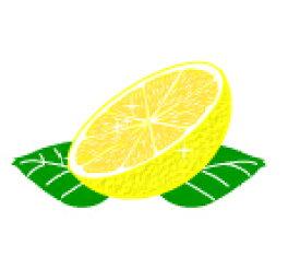 セレクティーのオリジナルフレーバー紅茶 グレープフルーツ 100g (50g x 2袋)