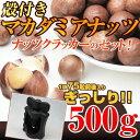 【送料無料】 殻付きマカダミアナッツ&ナッツクラッカー(コアラ型 ナイロン製) 【あす楽対応】