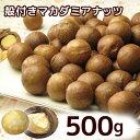 殻付きロースト マカダミアナッツ 500g