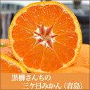 キズあり!【低農薬・有機肥料栽培】 黒柳さんちの 三ケ日みかん 「青島」 5kg<お取り寄せグルメ>