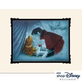 ディズニー Disney 眠れる森の美女 アートフレーム アートポスター Noah ギフト プレゼント