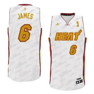 Adidas NBA heat # 6 LeBron James Trophy Banner Fashion Swingman Jersey (white)