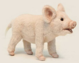 HANSA ブタ 6455 【送料無料】(ブタ、ぶた、豚、人形、置物、オブジェ、ぬいぐるみ、キャラクターグッズ) SP180602