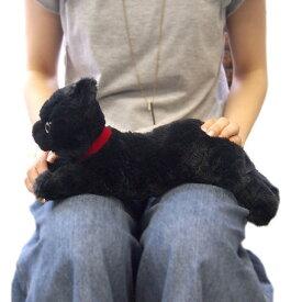 ひざねこ BK  Sサイズ(P-1972-1)【送料無料】(ねこ、ネコ、猫、ぬいぐるみ、人形、玩具、おもちゃ、キャラクターグッズ、プレゼントに最適)