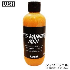 自然派石鹸 ラッシュ みつばちマーチ シャワージェル SP 250g ボディシャンプー LUSH 英国生まれ コスメ 石鹸 洗顔 ボディソープ