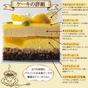 通販限定デコレーションケーキ【マンゴー】誕生日ケーキ記念日アルフォンソムースお祝いプレゼントパーティーおうち時間2〜4人前