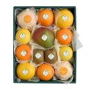 【送料込】千疋屋総本店(せんびきや)季節の果物詰合(3) 化粧箱入