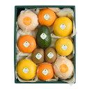 【送料込】千疋屋総本店(せんびきや)季節の果物詰合(2) 化粧箱入