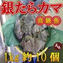 ◆脂乗り最高◆ギンタラカマ肉1kg【05P03Dec16】