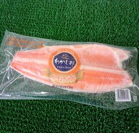 ◆脂ノリノリ◆甘塩サーモン半身大サイズ約1kg(1枚)【05P03Dec16】