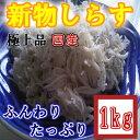 ◆新物しらす干し◆国産極上品1kg【05P03Dec16】