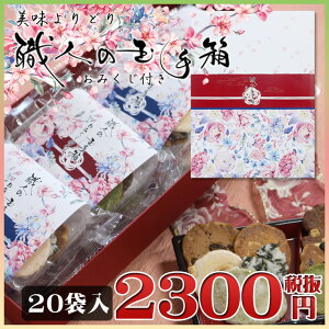 美味よりどり 金沢煎餅 職人の玉手箱 20袋入り箱包装