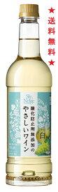 【2019年3月12日新発売】【送料無料】サントネージュ 無添加のやさしいワイン 白 720mlペットx12本