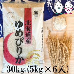 お米 30kg(5kg×6) 北海道産ゆめぴりか 令和2年産