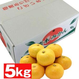 熊本産 みかん5kg(L・Mサイズ)【送料無料】【果物ギフト】【ギフト・ご贈答用】【ご家庭用】【ミカン】