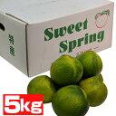 熊本産 スイートスプリング5kg【送料無料】【ご家庭用】【甘い】【果汁たっぷり果物】
