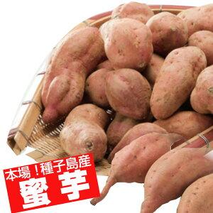 本場種子島産 プチ安納芋5kg【蜜芋】【送料無料】【ねっとり系さつまいも】【スイーツ食感】【ご家庭用】