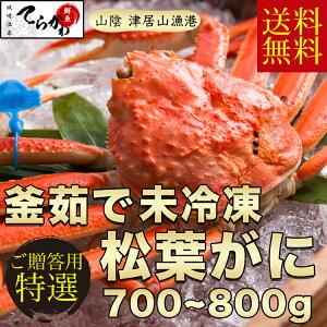 早期予約 ギフト【送料無料】津居山カニ 松葉がにプロが釜茹でした極上品(ボイル)茹でたて未冷凍のタグ付 1匹入(約700〜800g)まつばがに 松葉カニ 松葉ガニ 松葉蟹 未冷凍 かに カニ 蟹 ズワ