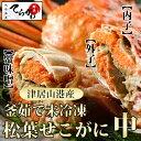 スーパーでは売ってないサイズのセコガニ 1匹(中)【津居山港産】せこがに 香箱ガニ 松葉セコガニ 松葉せこがに …