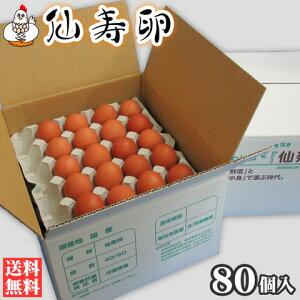 【送料無料】仙寿卵80個入(破損保証8個を含む)