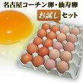 名古屋コーチン卵仙寿卵お試しセット