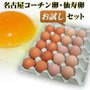 【送料無料】名古屋コーチン卵仙寿卵お試しセット(破損保証2個を含む)
