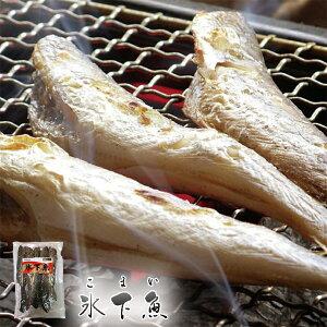 松前屋 氷下魚 200g×5個セット 送料無料 乾物 おつまみ 酒 お土産 ギフト プレゼント