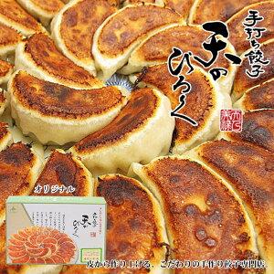 天のびろく 手打ち餃子 オリジナル 6個入 餃子 お土産 プレゼント ギフト