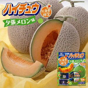 森永製菓 ハイチュウ 夕張メロン味 5本 北海道 地域限定 メロン果汁 お土産 手土産 贈り物 ギフト