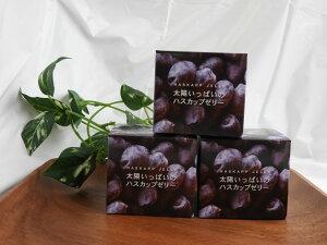 もりもと 太陽いっぱいのハスカップゼリー 80g×2個入 北海道 人気 果実 お土産 手土産 贈り物 ギフト