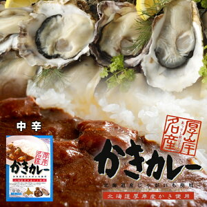 厚岸名産 かきカレー 200g 北海道産 1人前 レトルト 中辛 牡蠣 お土産 手土産