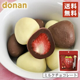 donan まるっと北海道いちごミルクチョコレート×2個セット 北海道 いちご ミルクチョコレート お土産 手土産 プレゼント お菓子